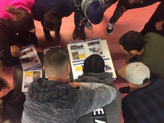 Vorming cyberpesten secundair onderwijs